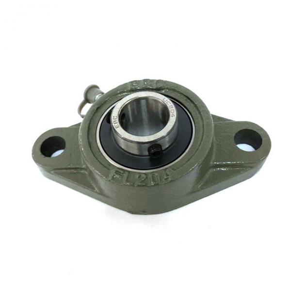 SKF P 30 FM bearing units #1 image